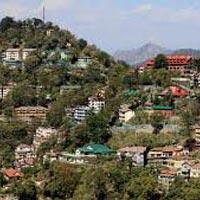 Shimla Calling Tour