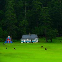 Glimpses Of Himachal Tour