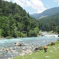 Kashmir Beauty Tour