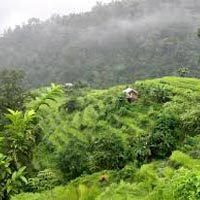 North East Delight with Pelling (Honeymoon Special) Tour