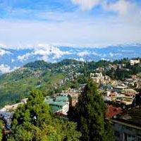 Darjeeling Tea Estate Tour