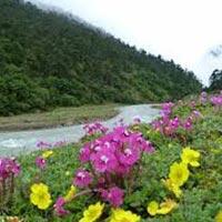 North Sikkim Pelling Tour