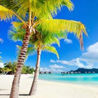 Goa Tour Package 4 Days