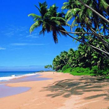 Goa 4Nights / 5Days Tour