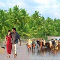 Best Honeymoon Packages In Kerala Tour