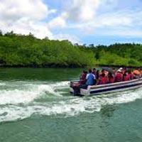 Andaman Corals Tour