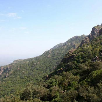 Pushkar - Mount Abu Tour
