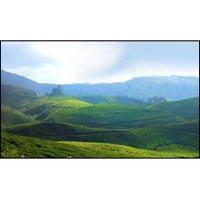 Kerala Greenery Gateway