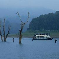 Kerala Misty Mountains