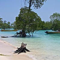 8 Nights 9 Days Andaman Tour Packages
