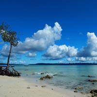 4 Nights 5 Days Andaman Tour Package