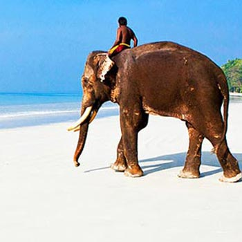 The Mysterious Islands of Andaman and Nicobar Tour