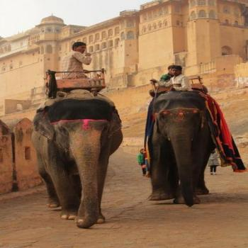 Long Weekend Breaks - the Golden Triangle Tour