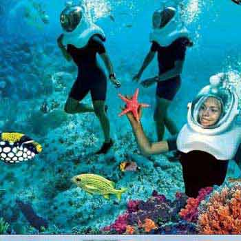 A Glimpse of Andamans Tour