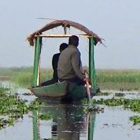 Bird Watching Tour of Odisha