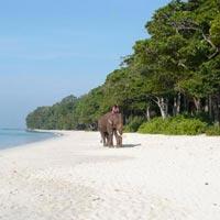Andaman Honeymoon Ecstasy Tour