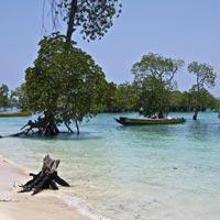 Exotic Andaman & Nicobar Tour 5 Days / 4 Nights