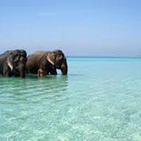 Unforgettable Andaman Islands Tour