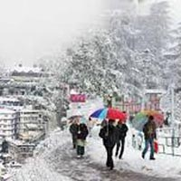 Shimla with Manali Trip