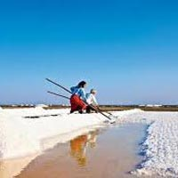 Amazing Great White Rann (Deasert) & Beach (4Nights / 5Days)