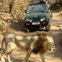 Seven Wonders of Gujarat - ( 7Night / 8Days ) Tour