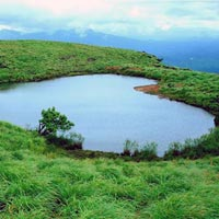Mysore & Wayanad Package