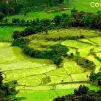 Coolest Karnataka Tour