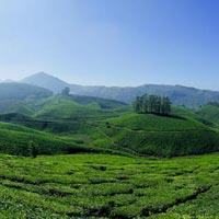 Kerala honeymoon Luxury Tour