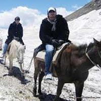 Luxury Manali Volvo Package