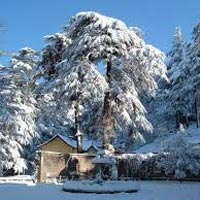 Manali Shimla Package 5 Nights/6 Day
