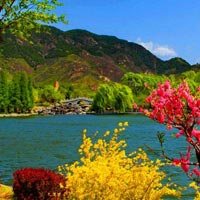Honeymoon Kashmir 6 Nights/7 Days Tour