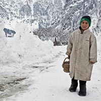 7/8 Days Tour Package Kashmir