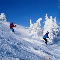 Kashmir Paradise with Himachal Tour