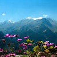 Himachal Hues Tour
