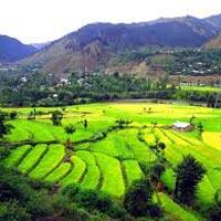 Katra Srinagar 7 nights 8 days Tour