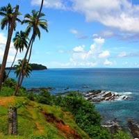 Amazing Islands Tours