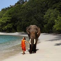 Port Blair with Havelock Beaches Tour