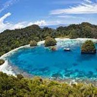 Island Calling Tour