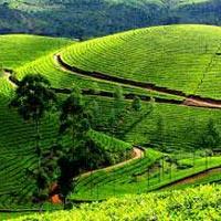 Kerala - Munnar - Thekkady - Allepy - Kovalam Tour