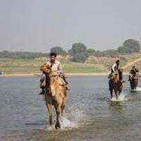 Golden Triangle and Chambal Safari Tour