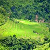 Assam Nagaland Tribal Tour