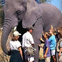 Golden Triangle Tour With Ranthambore National Park 5 Nights / 6 day