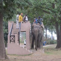 Delhi-Dhikala Forest Lodge Weekend Tour