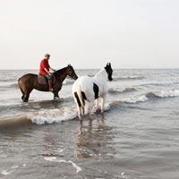 Maharashtra Beaches and Hills tour