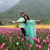 Romantic Kashmir Tour Package ( 4 Nights / 5 Days )