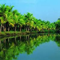 Romantic Kerala Tour Package ( 3 Nights / 4 Days )
