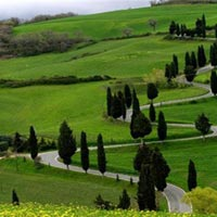 Exotic Mysore - Ooty - Kodaikanal Tour Package Tour Package ( 5 Night / 6 Day )