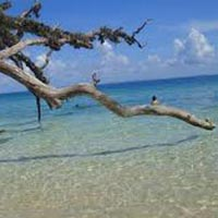 Fascinating Andaman 5 Days Tour Package