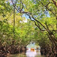 Andaman Romantic Tour