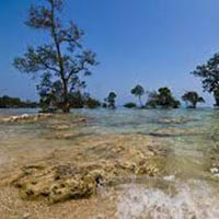 Port Blair 1 Nights / 2 Days Tour